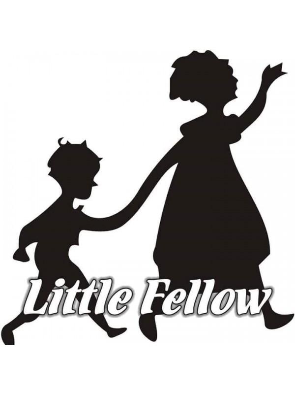 Little Fellow Daycare & Elementary School